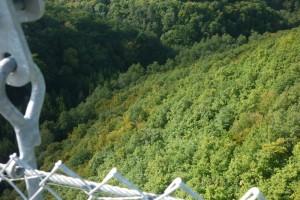 Geierlay – längste Hängeseilbrücke Deutschlands – Blick in die Tiefe